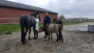 paardencoaching-08042016-4