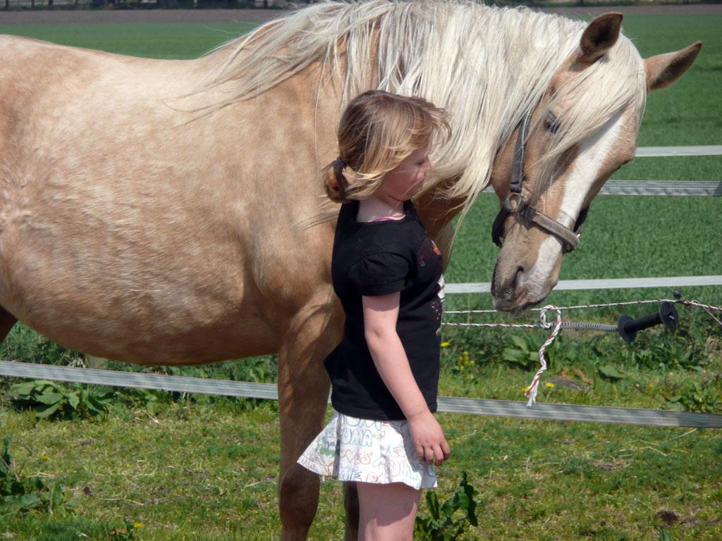 Gezinscoaching Kinderen/jongeren
